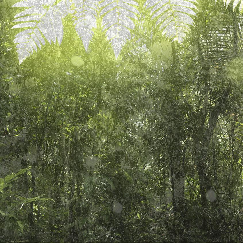 rain variations 4
