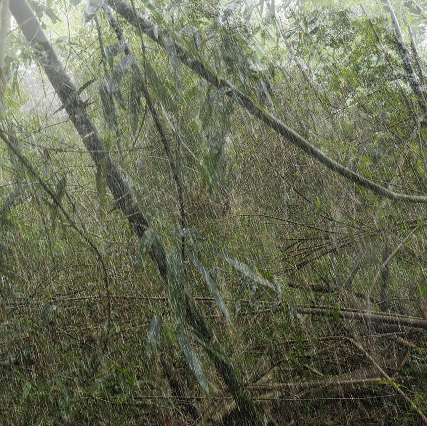 rain variations 5