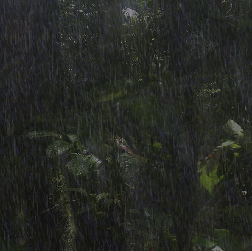 rain variations 6