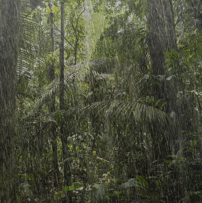 rain variations 7